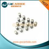 Штыри цементированного карбида для автошин