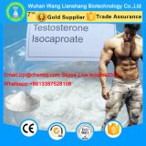 Hoher Reinheitsgrad-Testosteron Isocaproate sicheres injizierbares Steroid Puder CAS 15262-86-9