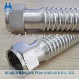 Noix d'acier inoxydable d'extrémité de tube