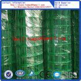 Rullo PVC-Rivestito della rete fissa/vendita calda euro rete fissa