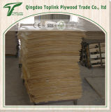 Listón de madera de la base del LVL de la buena calidad de