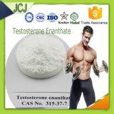 Het Testosteron Enanthate van de Cyclus van Enanthate van de Test van de Versterker van de spier