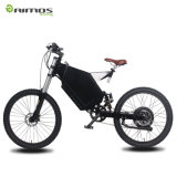Fahrrad des Gebirgselektrisches Fahrrad-E mit voller Aufhebung in der großen Geschwindigkeit