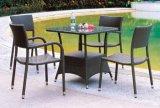 庭のテラスの枝編み細工品/セット(LN-087)を食事する藤の家具