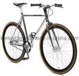높은 장력 조정 기어 자전거 자전거 Sy-Fx70007