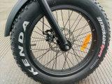 20 인치 뚱뚱한 타이어 E 자전거를 가진 2017 새로운 전기 접히는 자전거
