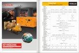 generatore elettrico del biogas del gas di 250kVA Kanpor