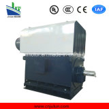Aria-Acqua di serie 6kv/10kvyks che raffredda il motore a corrente alternata Trifase ad alta tensione Yks6302-8-900kw