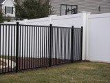 Rete fissa decorativa rivestita di manutenzione della polvere libera di base di Interpon per il giardino ed il balcone
