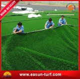 Erba artificiale decorativa del giardino da vendere