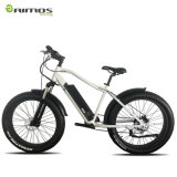 500W 750W 1000Wの脂肪質のタイヤの電気バイク