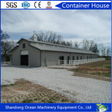 Construcción rápida Morden Diseño Estructura de acero Construcción Poultry Farm and Pig House con bajo presupuesto