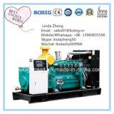 generatore del metano del biogas di 250kw 300kw 400kw 500kw 550kw