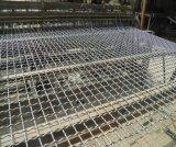 Tipo piano rete metallica unita galvanizzata/panno vaglio oscillante