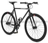 عادية توتريّة ثابتة ترس درّاجة درّاجة [س-فإكس70007]