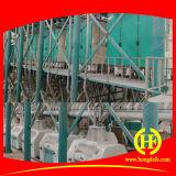 80t Etiópia Correr Farinha de Trigo Milling Machine