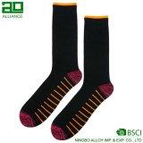 Mannschafts-Socken der Baumwollmänner