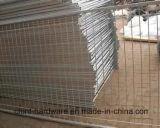 Горячий поставщик Китая Dingzhou гальванизировал сваренную ячеистую сеть