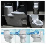 350 witte Washdown P Val 180mm Toilet Uit één stuk met Goedkope Prijs en Goede Kwaliteit