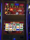 Het Gokken van Bingo van het Programma van Honderden van videospelletjes Gokautomaat van China