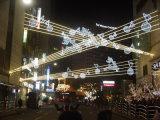 Decoración del partido de jardín de la Navidad LED neto luz al aire libre