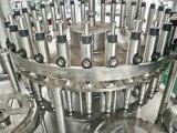 Máquina de rellenar automática llena del zumo de fruta Rxgf24-24-8 del precio de fábrica del SGS