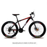 Дешевый поставщик Bike горы MTB от Китая (ly-a-12)
