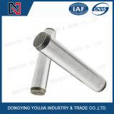 GB119 de Parallelle Spelden van het roestvrij staal