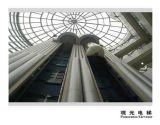 パノラマ式の上昇の観光の上昇の病院のエレベーターの乗客
