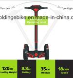 Vespa eléctrica de la vespa/de la vespa/dos ruedas del balance del balance Scooter/E-Bike/Self