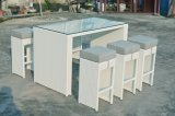 庭の柳細工の屋外のテラスの藤のFlorance棒一定の家具(J691)