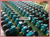 (Y2, YE2, YE3) alluminio a tre fasi di serie/motore elettrico del corpo ghisa