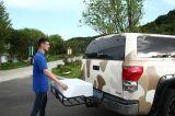 Новый Н тип легкий для того чтобы очистить перевозчик грузов (EZ-CC6011)