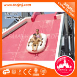 Saleのための専門のBig Water Slide Outdoor Sports Flow Rider