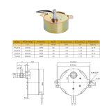 motor de pasos micro eléctrico de la CA 2-50W para el instrumento electrónico