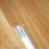 Accessorio laminato della pavimentazione per il pavimento