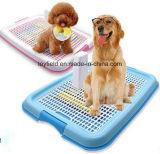 محبوب [بوتّي] صينيّة كلب تدريب كلب مرحاض