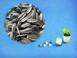 コックのための中国の最もよい商品のヒマワリの種5009