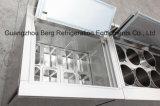 Refrigerador profissional da barra da salada do aço inoxidável para a venda