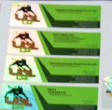 高品質の安い価格の薬剤のホログラム10mlの付着力のガラスびんのラベル