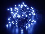 Lumière décorative bleue de chaîne de caractères pour le jardin et la décoration de Noël
