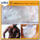 Muscular Ganho de Fornecimento CAS No. 58-20-8 Cipionato de Testosterona