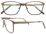 Vidrios del capítulo de China Nuevo Modelo Gafas últimos marcos ópticos