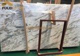 Marmo di marmo bianco del Brown della traccia d'argento