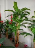 Migliori piante di vendita di Artifficial dell'albero di banana di Gu-Banana-FF-23-3