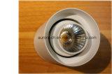 Nouveau plafonnier d'intérieur rond de la puissance élevée 35W LED de conception (S-S0003)
