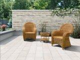 Mobilia esterna, giardino del sofà di svago impostato (FP0193)