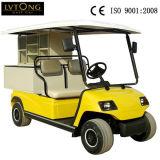 Automobile elettrica del carico di 2 Seaters per Comunità (LT_A2. H2)