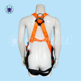 Volles Body Harness, Safety Harness, Seat Belt, Safety Belt, Webbing mit One-Point Fixed Mode (EW0119H)