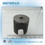 Magnete a ferro di cavallo del AlNiCo permanente per il motore